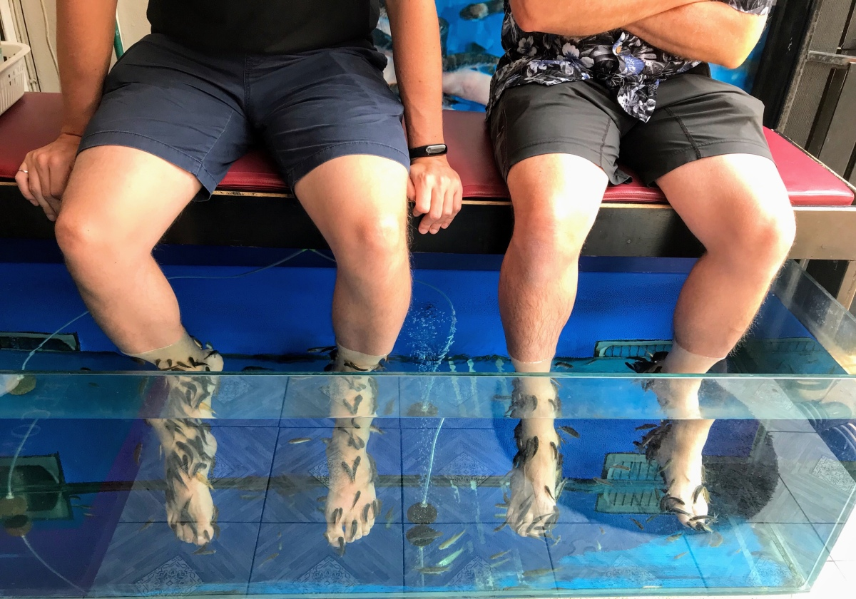 Chiang Mai–Fish Spa, Exploring Old City, Last Day Traveling with Alexander.